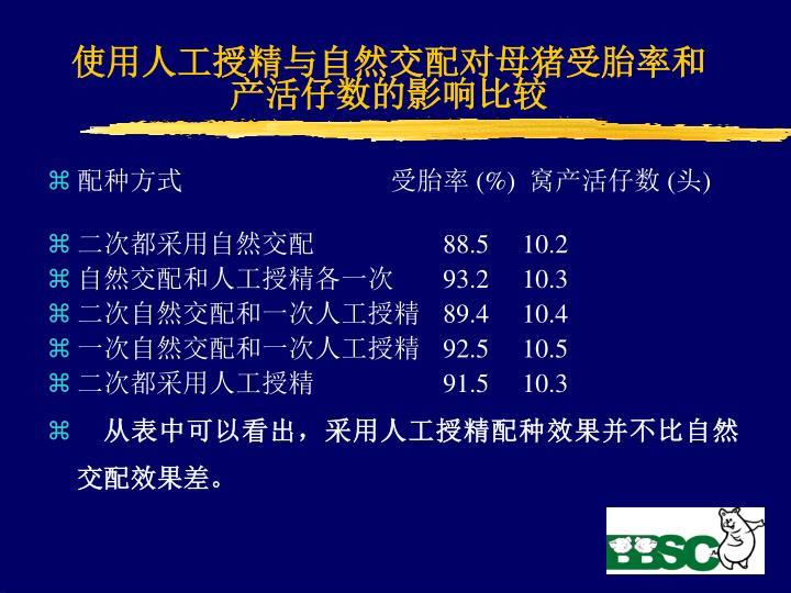 使用人工授精与自然交配对母猪受胎率和产活仔数的影响比较