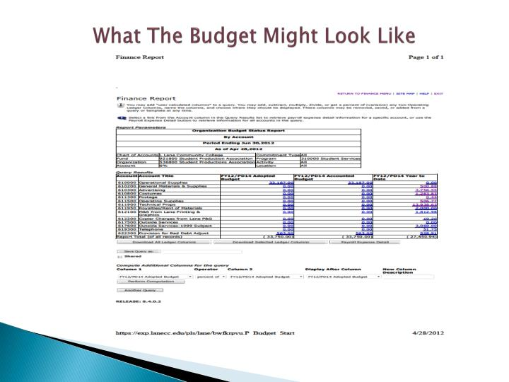 What The Budget Might Look Like