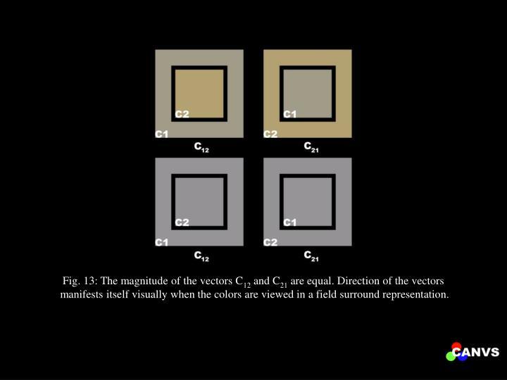 Fig. 13: The magnitude of the vectors C