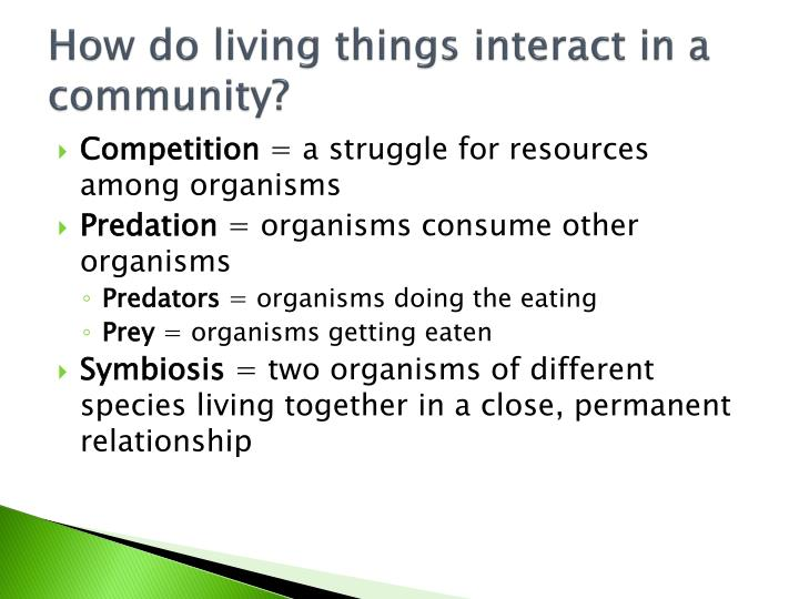How do living things interact in a community?