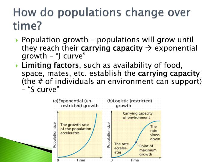 How do populations change over time?