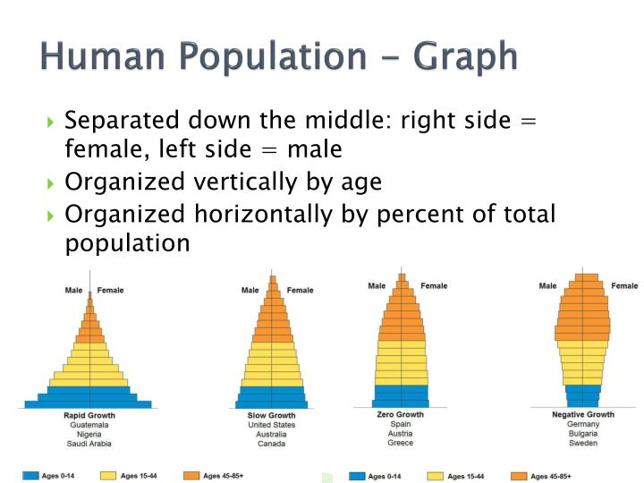 Human Population - Graph