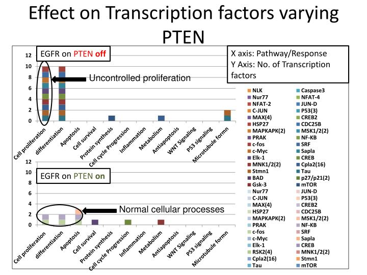 Effect on Transcription factors varying PTEN