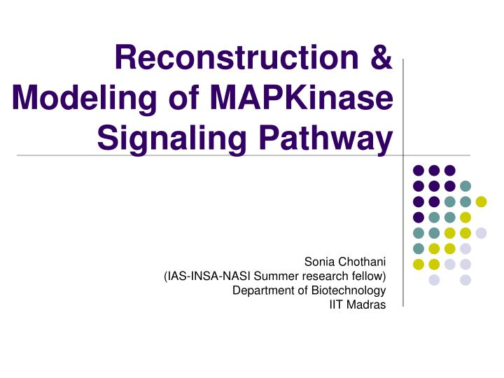 Reconstruction modeling of mapkinase signaling pathway