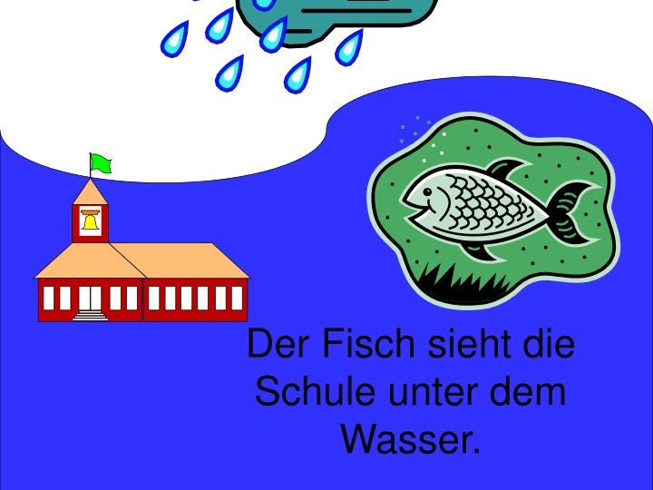 Der Fisch sieht die Schule unter dem Wasser.