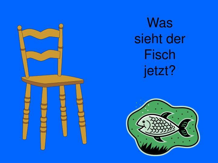 Was sieht der Fisch jetzt?