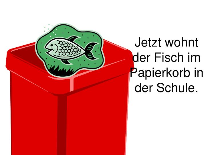 Jetzt wohnt der Fisch im Papierkorb in der Schule.