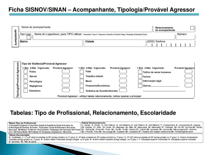 Ficha SISNOV/SINAN – Acompanhante, Tipologia/Provável Agressor