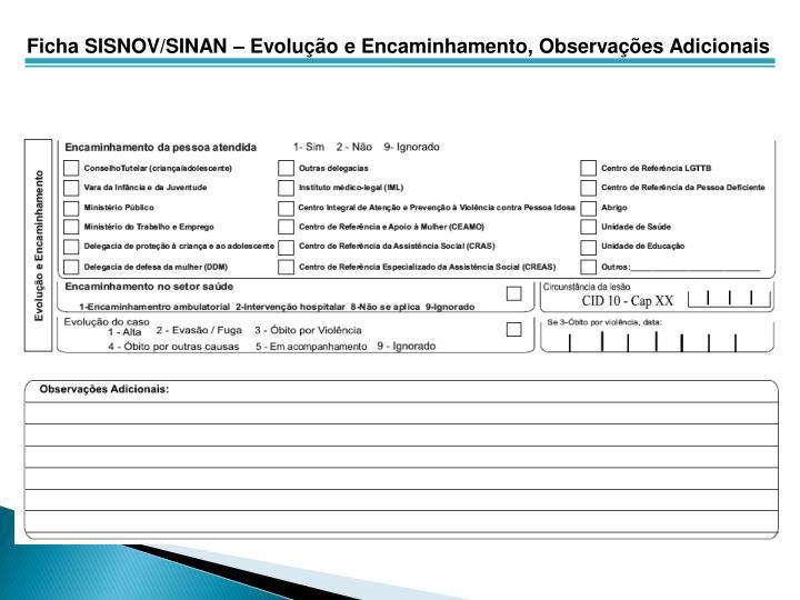 Ficha SISNOV/SINAN – Evolução e Encaminhamento, Observações Adicionais