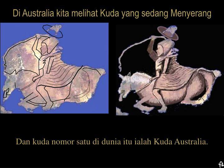 Di Australia kita melihat Kuda yang sedang Menyerang