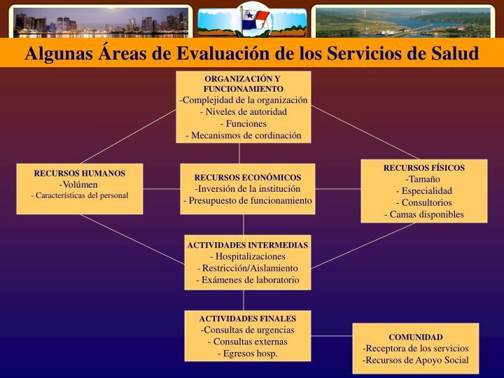 Algunas Áreas de Evaluación de los Servicios de Salud