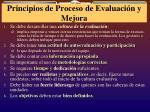 principios de proceso de evaluaci n y mejora