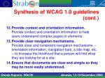 synthesis of wcag 1 0 guidelines cont2