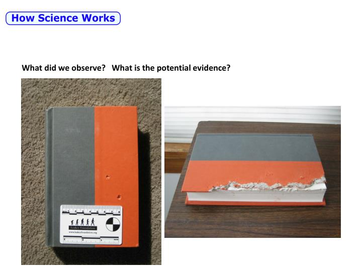 What did we observe?   What is the potential evidence?