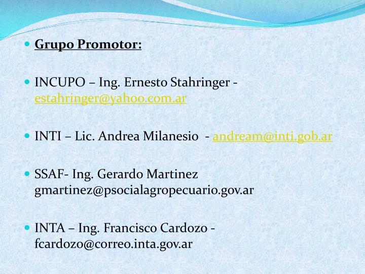 Grupo Promotor: