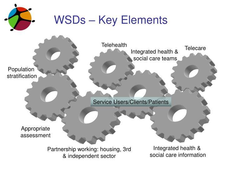 WSDs – Key Elements