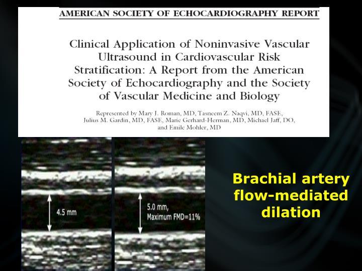 Brachial artery flow-mediated dilation