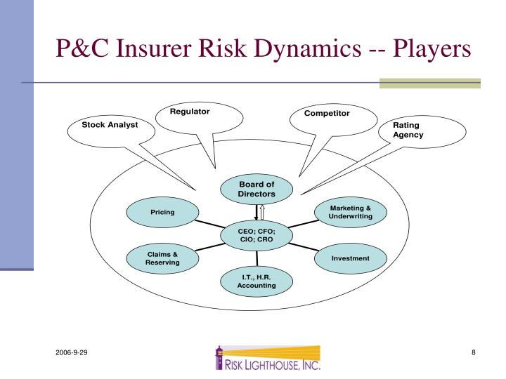 P&C Insurer Risk Dynamics -- Players