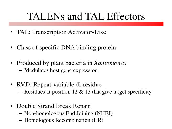 Talens and tal effectors