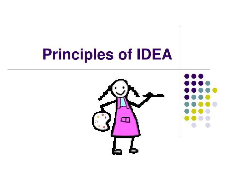 Principles of IDEA
