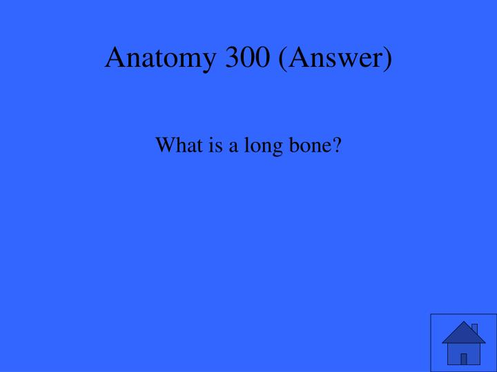 Anatomy 300 (Answer)