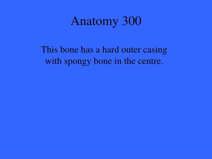 Anatomy 300