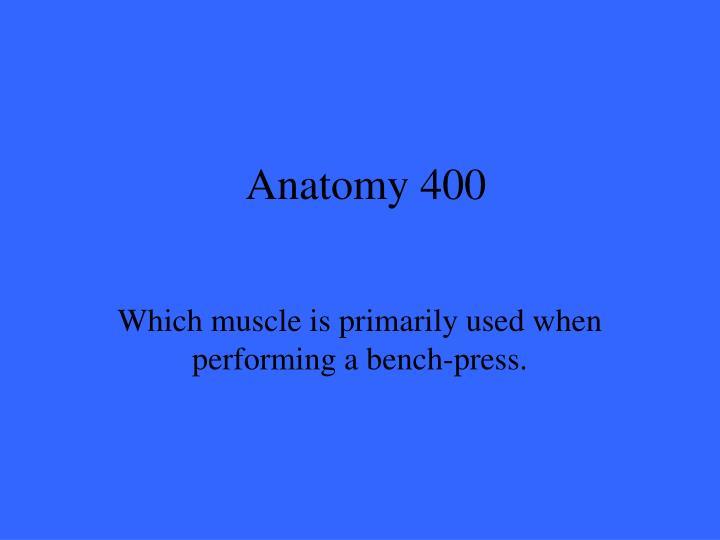 Anatomy 400