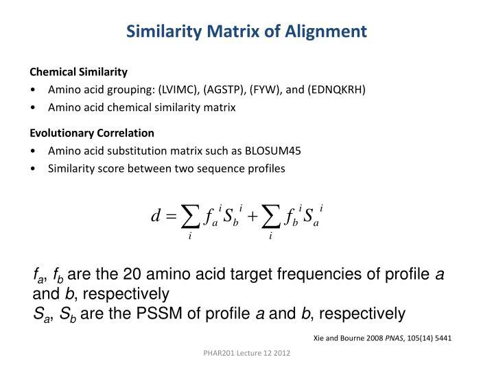 Similarity Matrix of Alignment