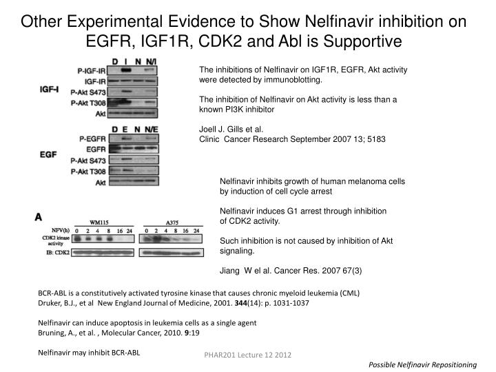 Other Experimental Evidence to Show Nelfinavir inhibition on EGFR, IGF1R, CDK2 and Abl is Supportive