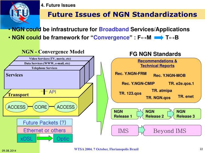 FG NGN Standards