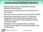 autonomous runtime services1