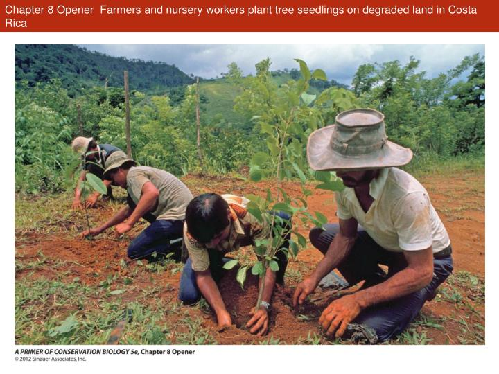 Chapter 8 opener farmers and nursery workers plant tree seedlings on degraded land in costa rica