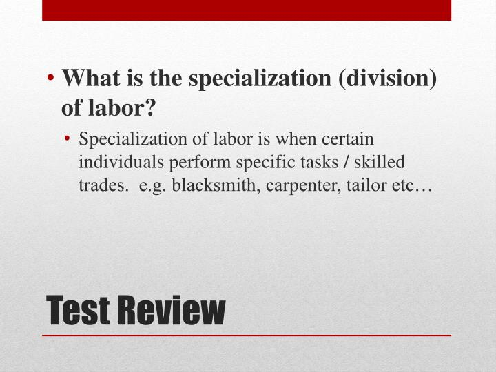 What is the specialization (division) of labor?
