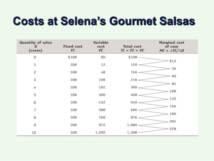 Costs at Selena's Gourmet Salsas