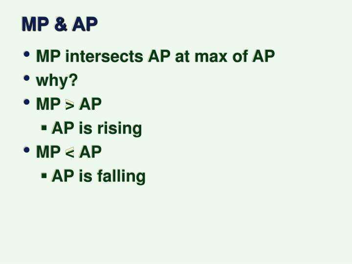 MP & AP