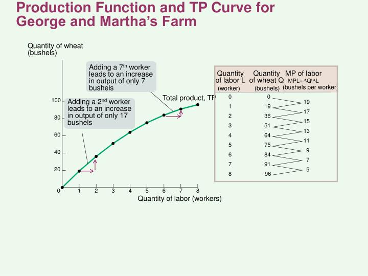 Production Function and TP Curve for
