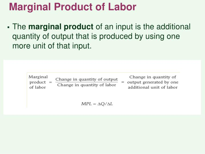Marginal Product of Labor