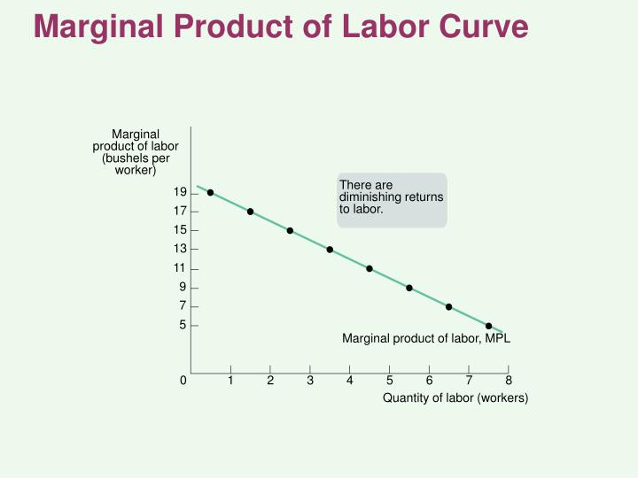 Marginal Product of Labor Curve