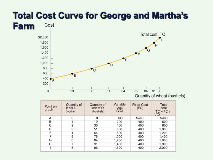 Total Cost Curve for George and Martha's Farm