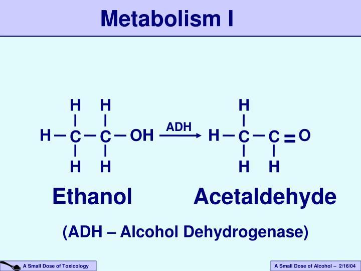 Metabolism I