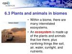 6 3 plants and animals in biomes2