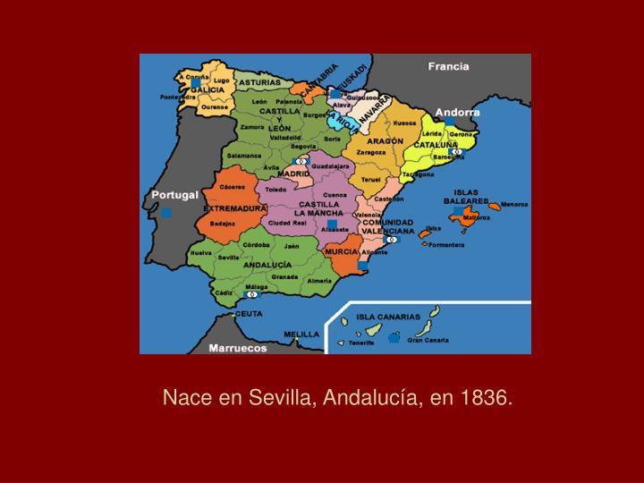 Nace en Sevilla, Andalucía, en 1836.