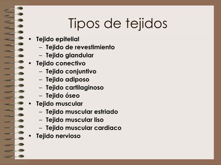 Tipos de tejidos