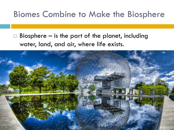Biomes Combine to Make the Biosphere