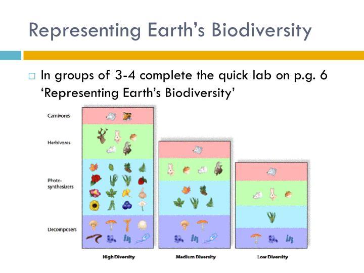 Representing Earth's Biodiversity