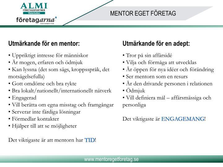 Utmärkande för en mentor: