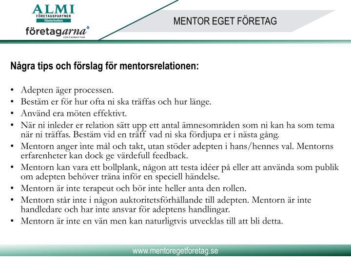 Några tips och förslag för mentorsrelationen: