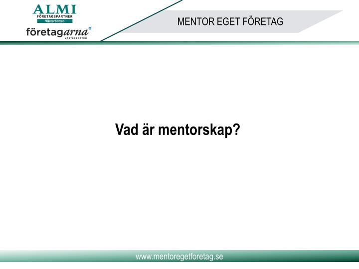 Vad är mentorskap?