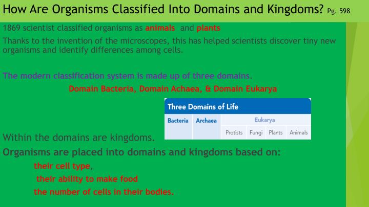 How Are Organisms Classified Into Domains and Kingdoms?