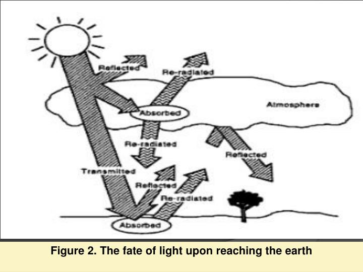 Figure 2. The fate of light upon reaching the earth